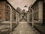 Olocausto_5.jpg