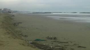 Rimini_Spiaggia_post mareggiata.jpg