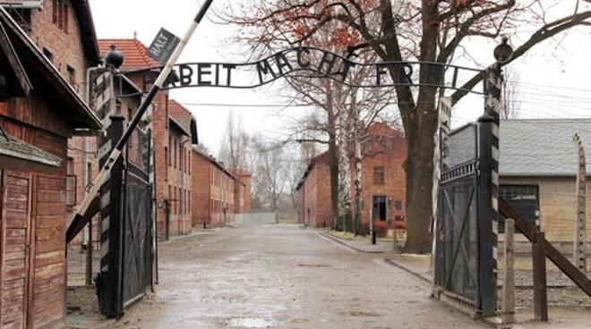 Olocausto_4.jpg