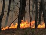Incendio1.jpg