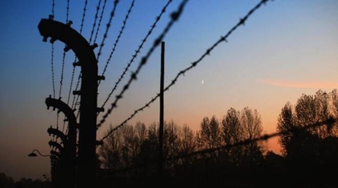 Olocausto_2.jpg