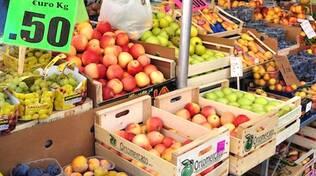 Agricoltura_Frutta.JPG