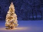 Natale_Albero1.jpg