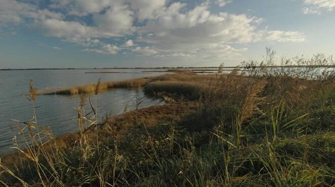 Una bella immagine del Parco del Delta