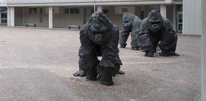 I Gorilla di Rivalta nel cortile del Tribunale di Ravenna