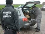I finanzieri del Comando di Rimini sono stati affiancati in questa operazione dai collleghi di Bologna