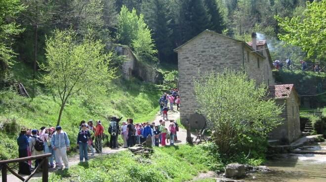 Il Parco nazionale delle Foreste Casentinesi