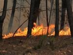 L'incendio del 2012