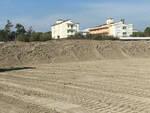 Quello della duna è un intervento che a Cervia si effettua da trent'anni