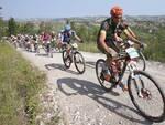 Rally di Romagna - Immagine di repertorio