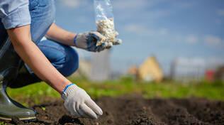 In termini assoluti il settore più sofferente è quello dell'agricoltura