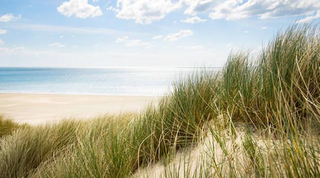 L'ordinanza è pensata, oltre che per agevolare i mezzi di sicurezza, anche per tutelare l'ambientee le dune