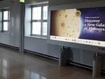 La grande Piadina-Luna stampata sui display luminosi dell'aeroporto di Francoforte