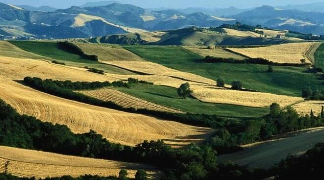 I problemi dell'agricoltura nelle aree collinari romagnole al centro del convegno organizzato da Cia Romagna