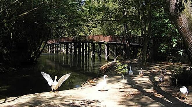 Il Parco Naturale di Cervia è tra i siti nei quali si potrà prestare il servizio civile