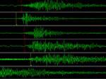 I sismografi dell'Istituto Nazionale di Geofisica e Vulcanologia hanno registrato una magnitudo 2.5 Richter