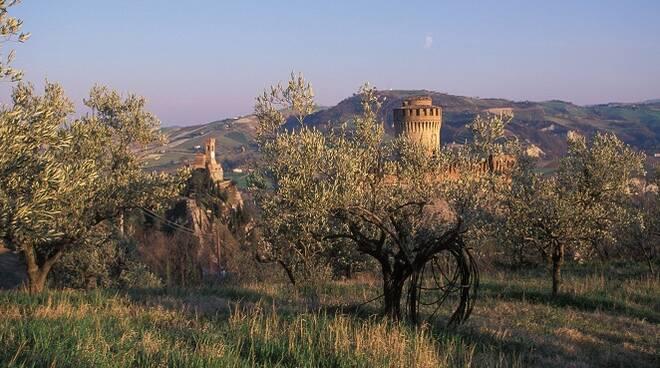 Brisighella, la Rocca tra gli olivi