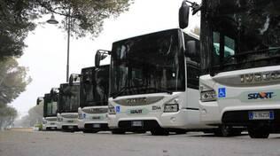 Alcuni dei nuovi bus di Start Romagna (foto d'archivio)