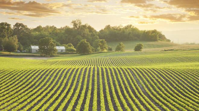 La riduzione di suolo trasformabile in terreno agricolo sarà pari a 70 ettari