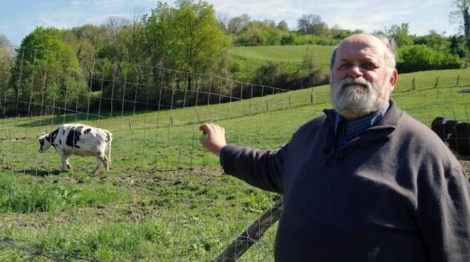 Giorgio Mario Giorgini dell'azienda agricola F.lli Giorgini, uno dei produttori presenti al mercato di Civitella