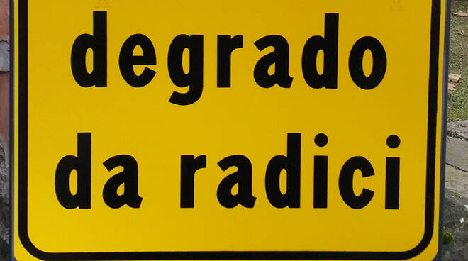 "I cartelli 'degrado da radici"""