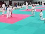 I giovani judoka in azione