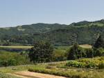 Le colline di Casola Valsenio