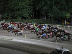 cavalli ippodromo di Cesena