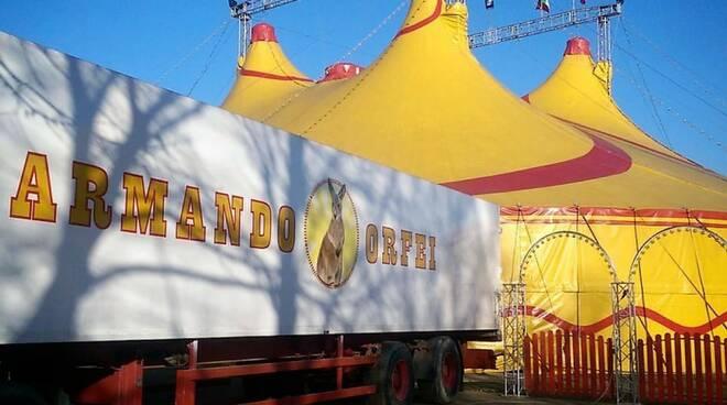 circo-Armando Orfei