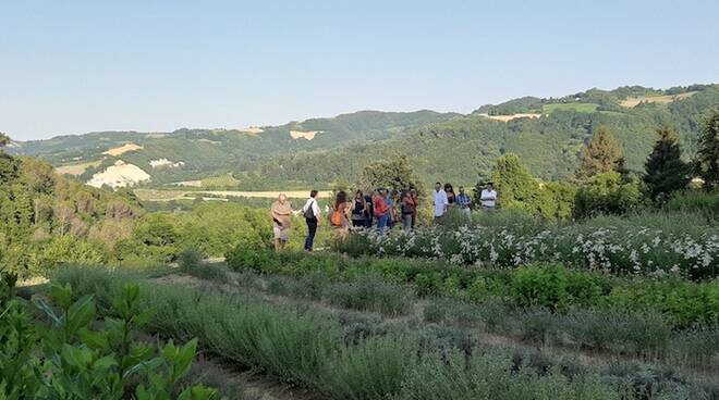 Il Giardino delle Erbe di Casola Valsenio