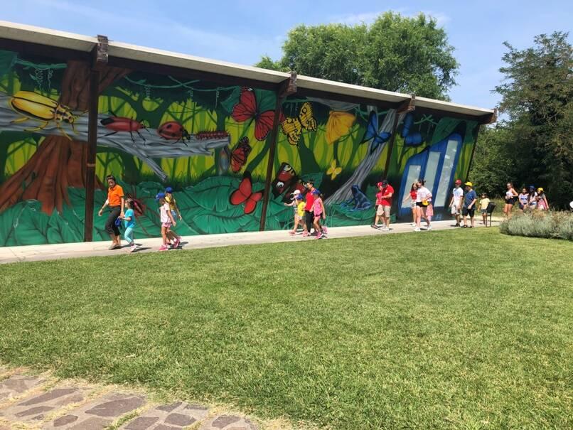 Murales Casa delle Farfalle Cervia