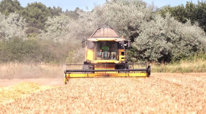 Cooperative agricole Ravenna