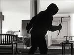 ladro in casa 2