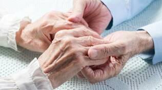 Alzheimer  -anziani
