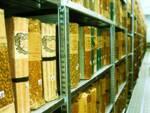 archivio storico del Comune di Lugo
