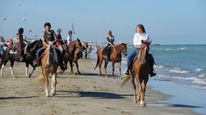 cavalli sulla spiaggia cervese del Fantini Club