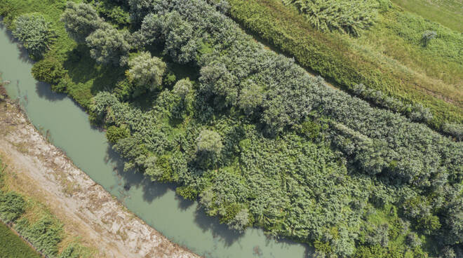 fiume lamone