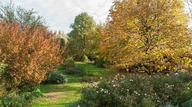 giardini segreti autunno