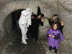"""il """"tunnel degli orrori"""" Bagnacavallo"""