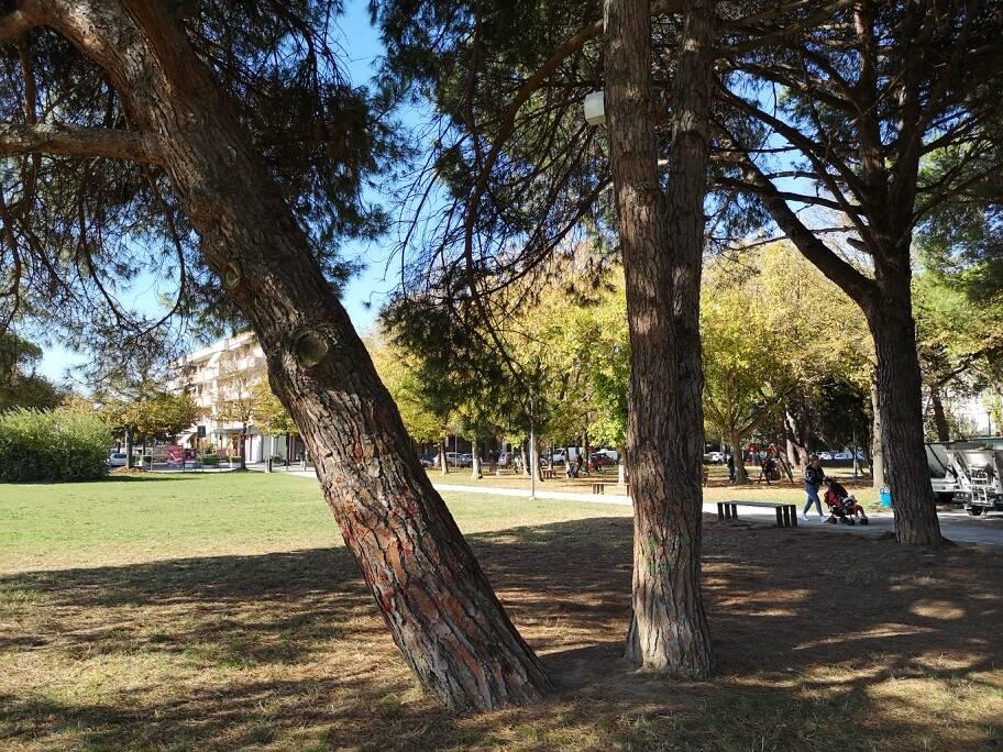 Parco del Comune Bellaria