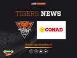 collaborazione Conad Tigers