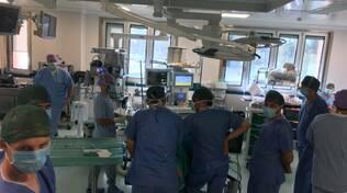 ortopedia Ravenna