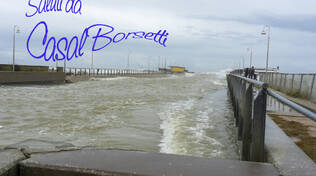 Saluti da Casal Borsetti