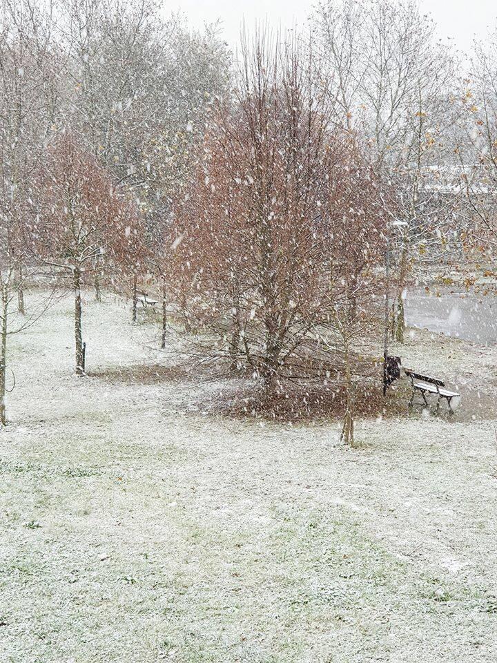 Nevica su tutta la provincia di Ravenna: i fiocchi cadono dal mare alla città