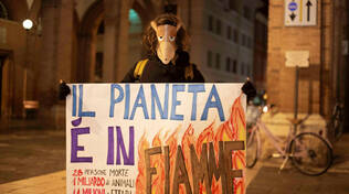 Flashmob Fridays for Future Cesena per l'Australia
