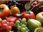 frutta ravennate