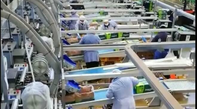 agrintesa lavorazione durante l'epidemia