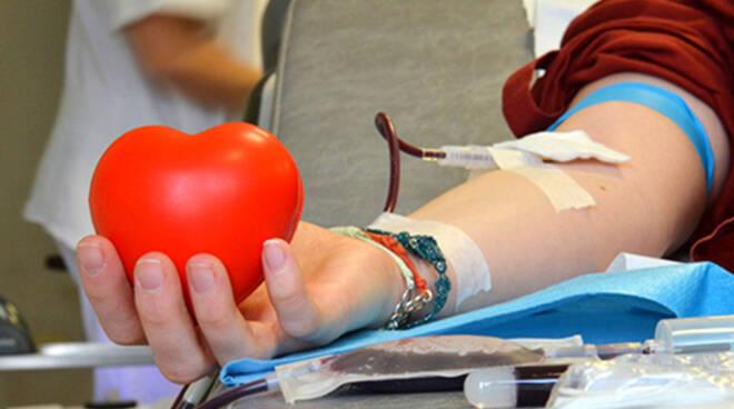 donazione sangue AVIS