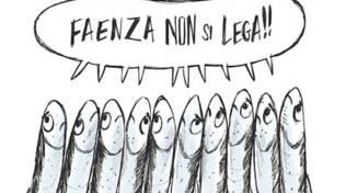 sardine faenza