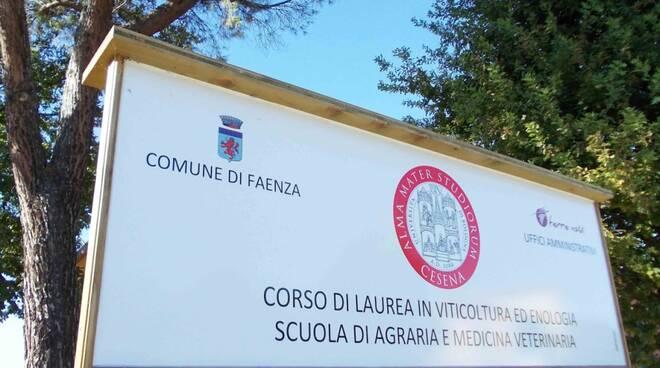 università di Faenza - Tebano - Viticoltura e enologia